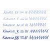 Kaweco Skyline replacement nib unit mint