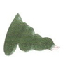 Diamine Evergreen 80ml