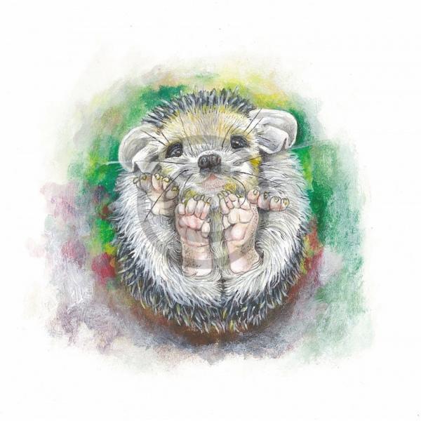 Arty Card Co Greetings Card - Hedgehog