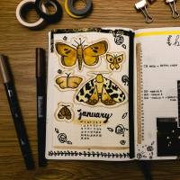 Journaling Essentials