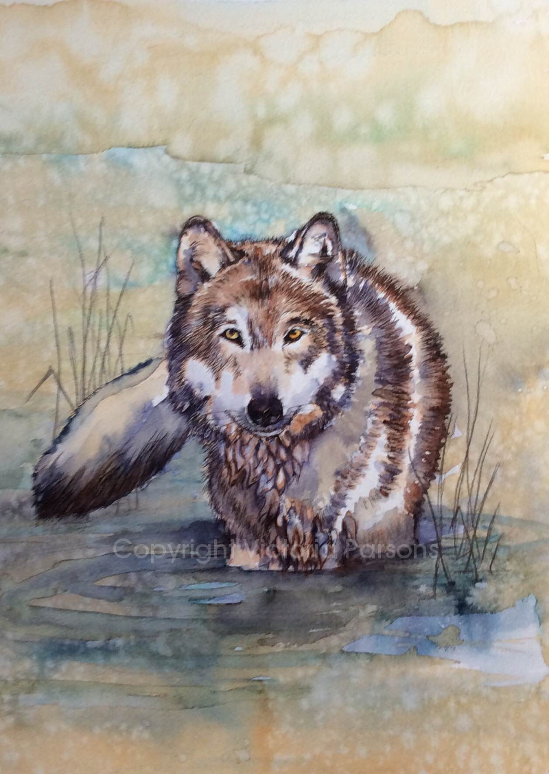 painting of wolf made with Diamine inks